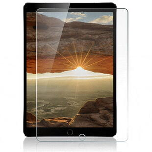 "Nordic Shield iPad 10.2"" Screen Protector (Bulk)"